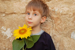 Cheerful boy with sunflower Stock Images
