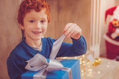 Cheerful boy tugging at bow on his Christmas present. Childlike impatience. Pleasant ginger-haired preteen boy posing for the camera while sitting near the royalty free stock photo