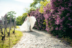 The cheerful bride is playing with her wedding dress while walking along the paving road near blooming liliac bushes. The cheerful bride is playing with her Royalty Free Stock Photo
