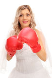 Cheerful bride with red boxing gloves Royalty Free Stock Images