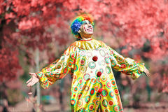 Cheerful bright clown on a background of red leaves. Outdoor photo of clown in autumn Stock Image