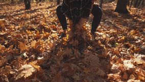 Joyful girl is taking dry maple leaves from ground in forest and throwing up. Cheerful brunette woman is playing with dried foliage in park in autumn. She is stock video