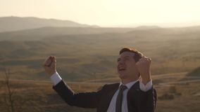 Cheerful businessman on nature stock video footage