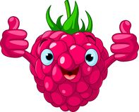 Cheerful Cartoon Raspberry character Stock Images