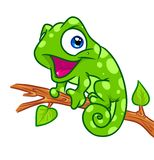 Cheerful chameleon tree branch cartoon illustration Royalty Free Stock Photo