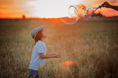 Cheerful child, boy, chasing soap bubbles in a wheat field on sunset stock photo