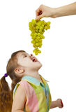 Cheerful child eats grapes from parental hands Royalty Free Stock Image