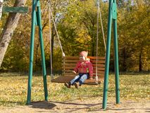 Cheerful child riding on a swing in autumn royalty free stock photography
