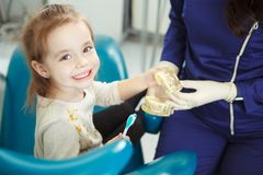 Cheerful child sits in dentist chair and learn about toothcare. Professional doctor teach adorable kid how to properly brush teeth on model of artificial human Royalty Free Stock Photo
