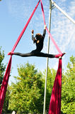 Cheerful child training on aerial silks Stock Images