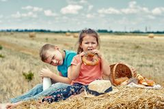 Cheerful children on a summer picnic in the field. Beautiful brother and sister on summer vacation royalty free stock photos
