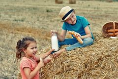 Cheerful children on a summer picnic in the field. Beautiful brother and sister on summer vacation royalty free stock photo