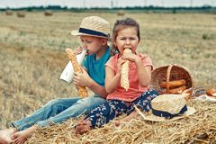 Cheerful children on a summer picnic in the field. Beautiful brother and sister on summer vacation royalty free stock image