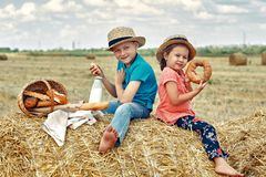 Cheerful children on a summer picnic in the field. Beautiful brother and sister on summer vacation royalty free stock images