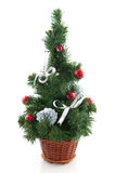 Cheerful christmas tree Royalty Free Stock Images