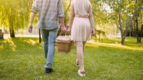 Cheerful couple carrying basket, going to usual place for picnic, open air date. Stock footage Royalty Free Stock Photos
