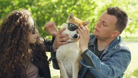 Cheerful couple is having fun with dog putting sunglasses on its eyes and laughing while spending weekend in the park stock video