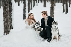 Cheerful couple are playing with siberian husky in snowy forest. Winter wedding Artwork royalty free stock photo