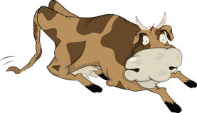 Free Cheerful Cow Stock Photography - 18801962