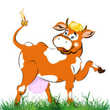 A  cheerful cow Royalty Free Stock Image