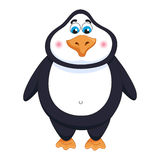 Cheerful cute penguin, fat birdie standing, funny character Stock Images
