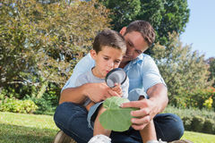 Cheerful dad and son inspecting leaf with a magnifying glass. In the park Royalty Free Stock Images