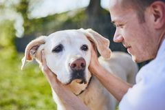Cheerful dog and his owner. Young man embracing labrador retriever on back yard of house stock photography