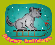 Cheerful dog. Dog sitting on a sled and rope in his mouth Stock Image