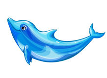 Cheerful dolphin. Cheerful a dolphin, white background Stock Photography