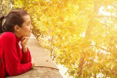Cheerful dreamy young woman at sunset. Side view of cheerful dreamy woman leaning on handrail and looking at trees in sunny day Stock Image