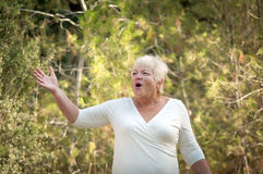 Cheerful elderly woman . Elderly woman in a summer park stock photography
