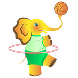 The cheerful elephant who is going in for sports. Royalty Free Stock Image