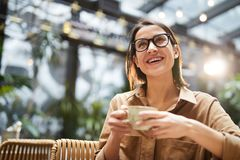 Cheerful lady drinking coffee stock images