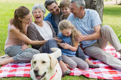 Cheerful extended family sitting on picnic blanket at park Royalty Free Stock Image