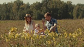 Cheerful family in field with picnic stock footage