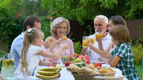 Cheerful family gathering together at countryhouse, celebrating anniversary. Stock footage stock video footage