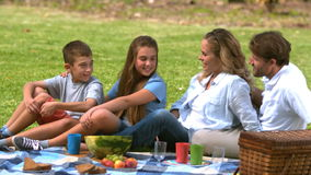 Cheerful family having a picnic together in a park