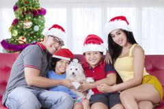 Cheerful family with dog at Christmas time. Cheerful family looking at the camera while playing with their dog on the couch. Shot at Christmas time Royalty Free Stock Photo