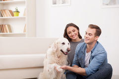 Cheerful family is playing with pretty puppy Stock Image