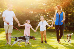 Cheerful family walking together with dogs in park. Portrait of cheerful Caucasian family with two children walking together with dogs holding hands and royalty free stock photos