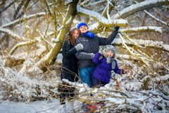 Cheerful family in the winter wood stock images