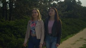 Cheerful female friends enjoying walk in spring park stock footage