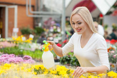 Cheerful female gardener is caring of plants Royalty Free Stock Image