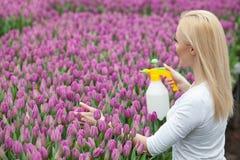 Cheerful female gardener is watering spring flowers Stock Photo