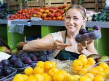 Cheerful  female seller wearing apron holding plums Stock Photography