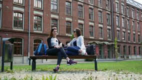 Cheerful female students chatting while sitting on bench in campus park before lessons. University friends stock video
