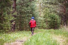 Cheerful five-year-old boy in a warm cap and down jacket running through the woods royalty free stock photo