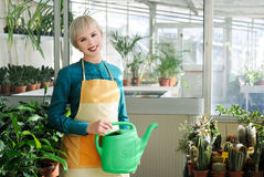 Cheerful florist Stock Images