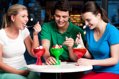 Cheerful friends enjoying tempting dessert Stock Photos