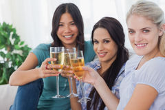 Cheerful friends enjoying white wine together smiling at camera Stock Photography